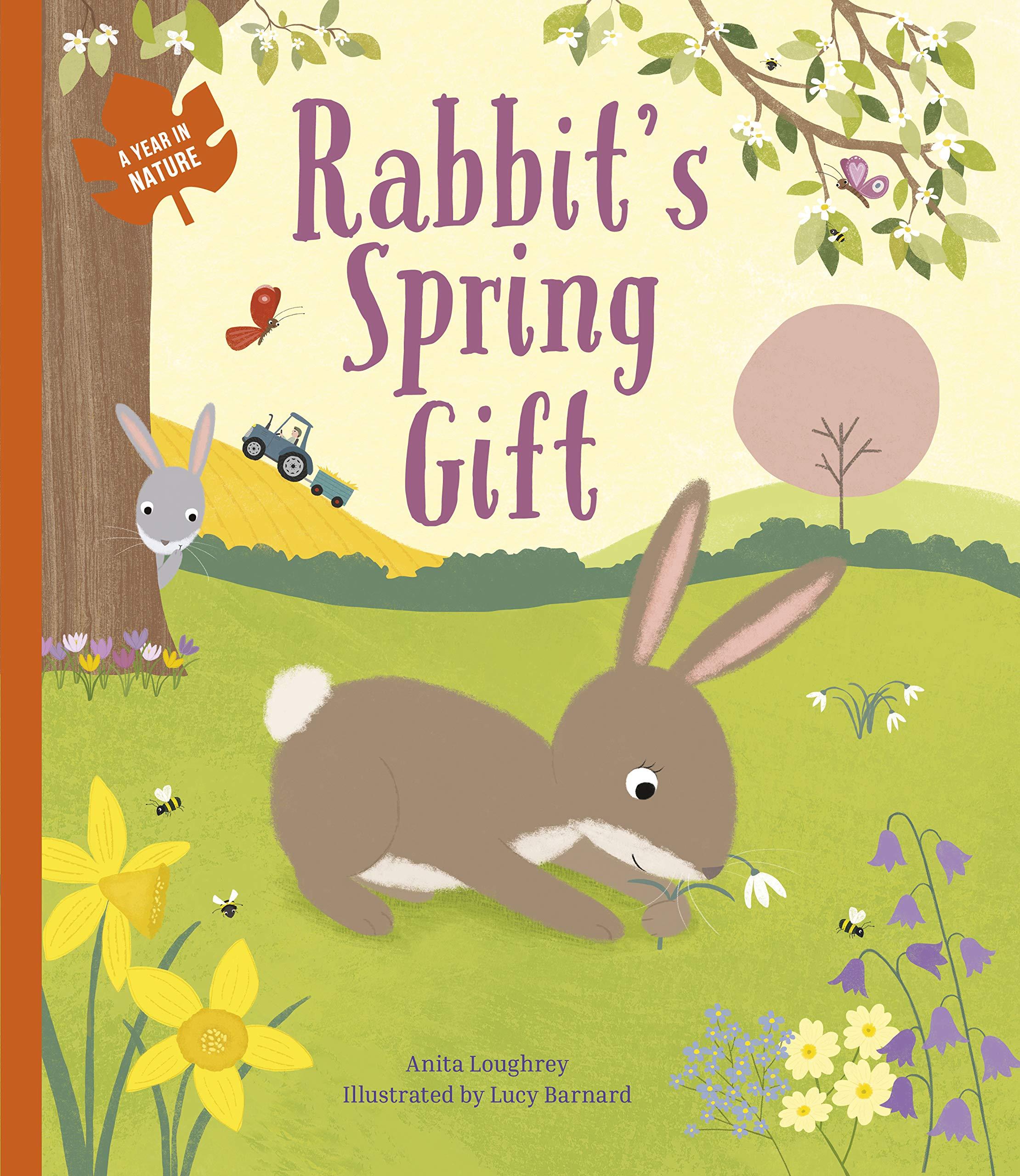 Rabbits Spring Gift